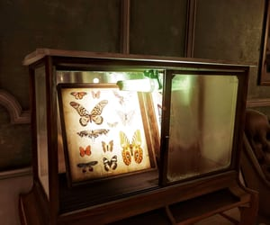 butterflies, dishonored, and collection image
