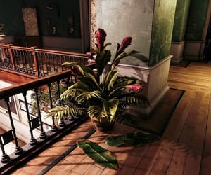 flowers, upstairs, and green image