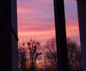 arboles, ventana, and atardecer image