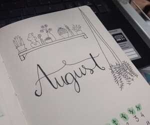 August, cactus, and diy image