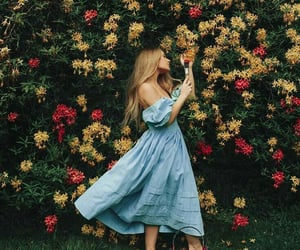 beauty, floral, and blue image