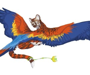 cat and winged cat image