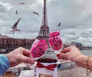 amor, france, and macaroons image