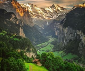 europe, forest, and travel image