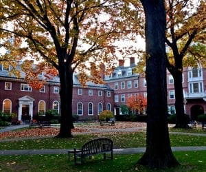 article, harvard, and oxford image