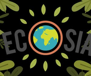 article, flowers, and ecosia image