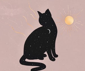 cat, magic, and pink image