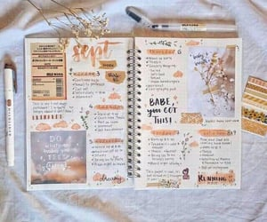 bullet, flowers, and journal image