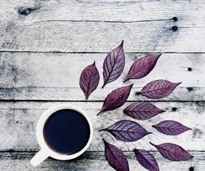 Bebidas, drink, and cup image
