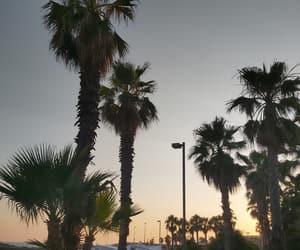 beach, vacances, and ⓟⓛⓐⓨⓐ image