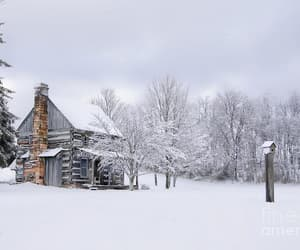 cold, cozy, and snow image