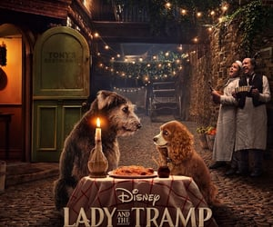 disney, lady and the tramp, and dogs image