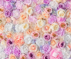art, background, beautiful, beauty, camera, design, flowers, inspiration, luxury, pastel, pretty, retro, roses, soft, softy, still life, style, vintage, vintage style, wallpaper, wallpapers, we heart it, white, woman, backgrounds