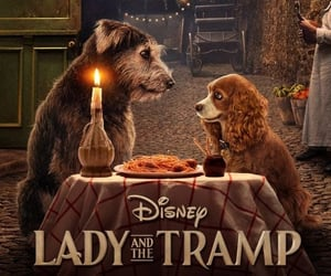 disney, bella note, and lady and the tramp image