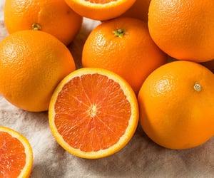 oranges // foodohmy