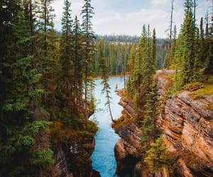 Alberta, canada, and nature image