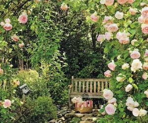 decor, flowers, and secret image