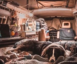 adventure, travel, and van image