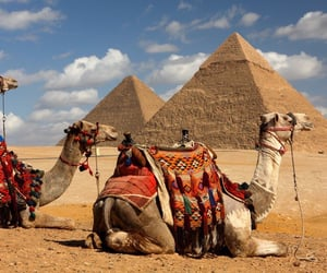 africa and egypt image
