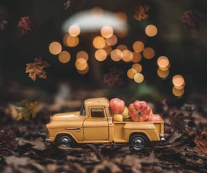 autumn, background, and bokeh image