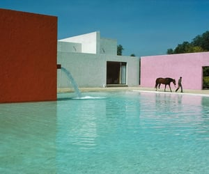 architect, architecture, and horse image