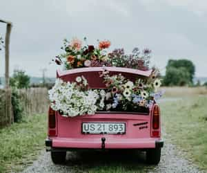 aesthetic, inspiration, and flowers image