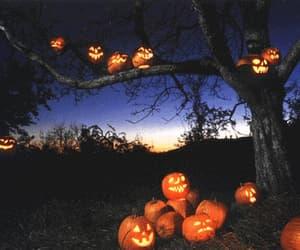 autumn, gif, and pumpkins image