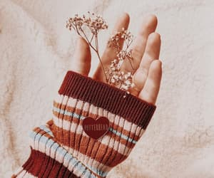 flowers, red, and sweater image