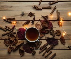 autumn, Cinnamon, and fall image