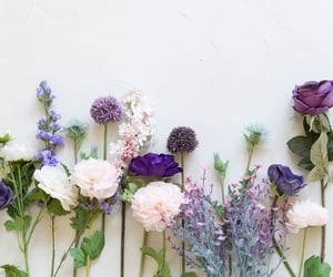 flowers, purple, and spring image