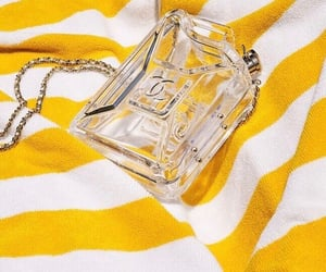 accessories, bags, and striped image