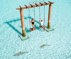 @earthpix: A quick swing with sharks in Maldives 🇲🇻 Captured by @agirlwhoblooms