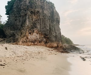 beach, enjoy, and palm trees image