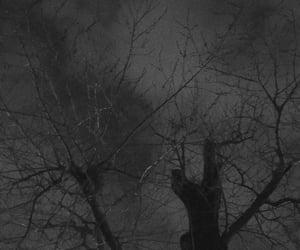 arboles, black, and Darkness image
