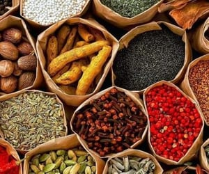list of indian spices and essential indian spices image