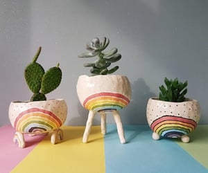 cactus, colors, and rainbow image