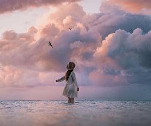 dreamy, ocean, and birds image