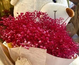 bear, fashion, and flowers image