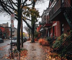 architecture, autumn, and canada image