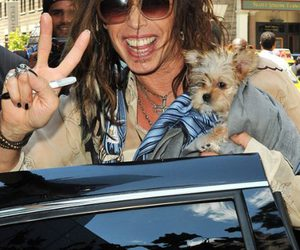 ai, american idol, and steven tyler image