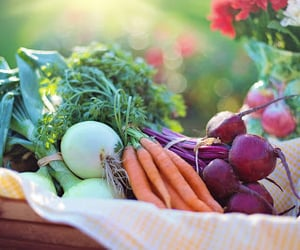 healthy, healthy eating, and eating healthy image