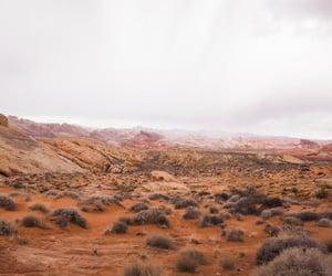 explore, nature, and Nevada image