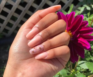 flower, nails, and nude nails image