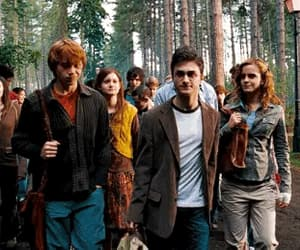 gif, potter, and ron weasley image