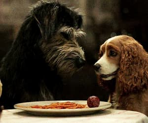 disney, gif, and lady and the tramp 2019 image