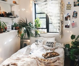 home, room, and plants image