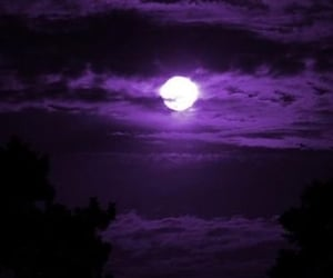 purple and moon image