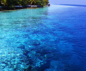 blue, sea, and gorgeous image