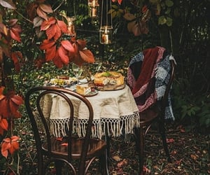 autumn, colors, and food image