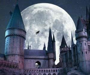 article, hogwarts, and ifiwenttohogwarts image